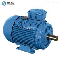 WEG電機W21-315S/M-02