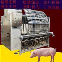 全自動豬刨毛機 不銹鋼豬脫毛機打毛機