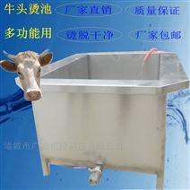 直销不锈钢猪头牛头羊头浸烫池 方∩形蒸煮锅