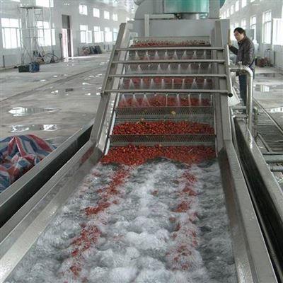 800型水果气泡清洗机