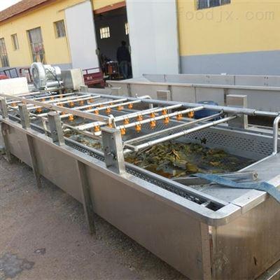 1000蔬菜加工气泡涡流清洗机
