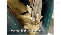 羊電擊暈 電麻擊暈設備 羊屠宰設備 羊屠宰線設備