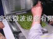 XH-20KW金银花杀青微波设备