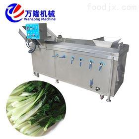 PT-22自动化桂圆苹果黄桃漂烫机品种繁多