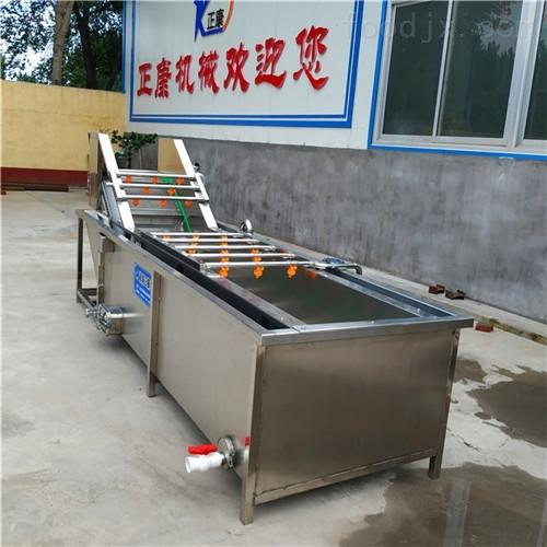 厂家生产直销不锈钢果蔬气泡清洗机