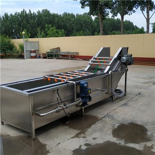 果蔬气泡清洗机 专业供应蔬菜水果清洗机 清洗机厂家