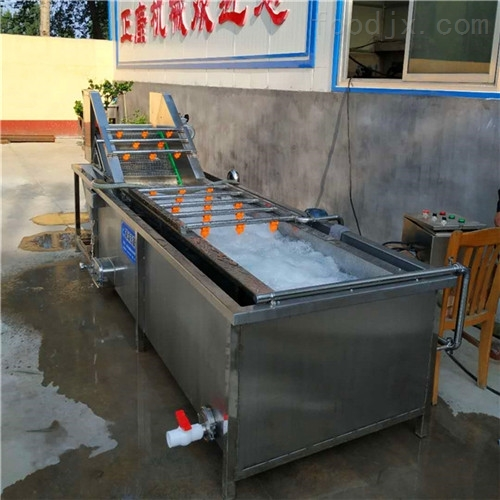 牡蛎气泡清洗机