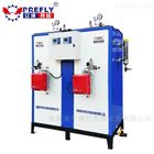 LWS大功率燃气蒸汽发生器