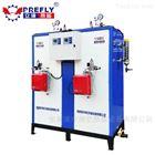 LWS大功率燃氣蒸汽發生器