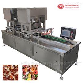 HQTG-50双头伺服糖果浇注机 双色软糖生产线设备