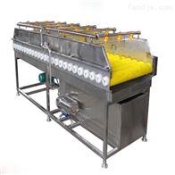 QX-1500果蔬清洗设备平行毛辊清洗机