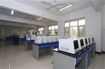 天然气全组份分析仪色谱仪