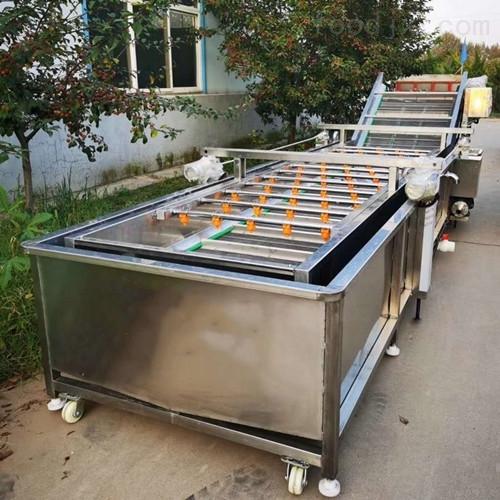 工业商用全自动气泡式洗菜机