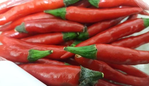 辣椒红素生产朝自动化发展成行业新增长点
