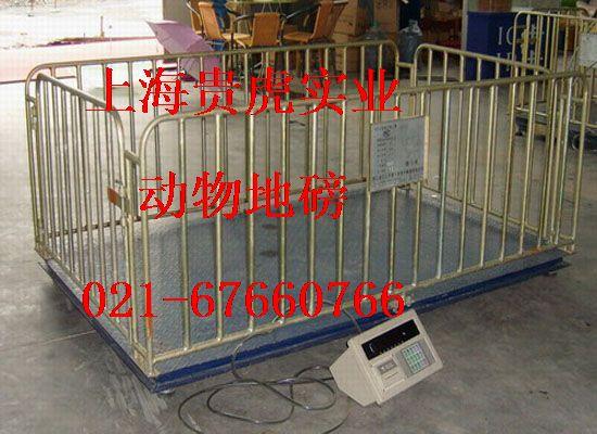 畜牧电子称,2000公斤猪笼秤