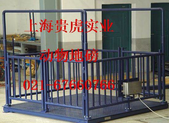 畜牧电子称2吨,畜牧电子磅三吨