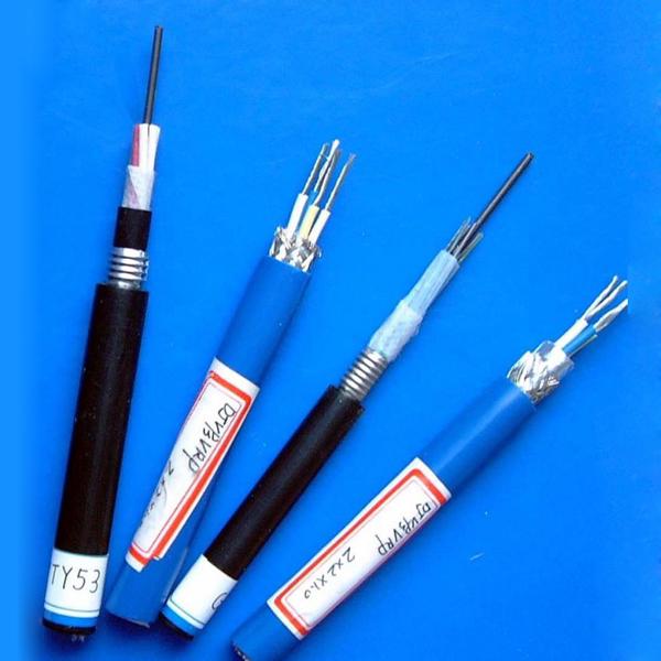 本质安全电路计算机屏蔽电缆(包括本安用DCS电缆)