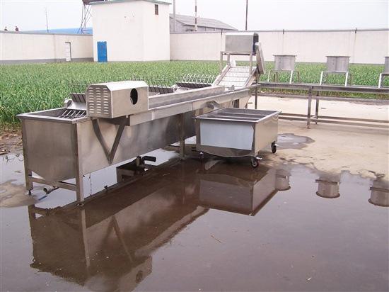 豆芽清洗机2