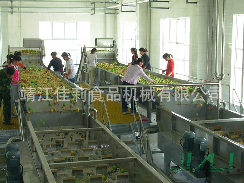 苹果前处理生产线设备