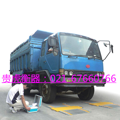 大卡车超载检测仪