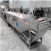 GTPT-7000辣椒预煮机加工设备 辣椒漂烫机生产线